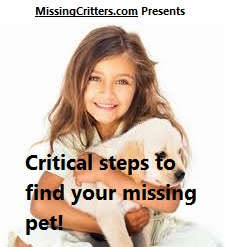 Missing Pet Instructions on Blog